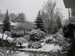 Besneeuwde tuin 2010